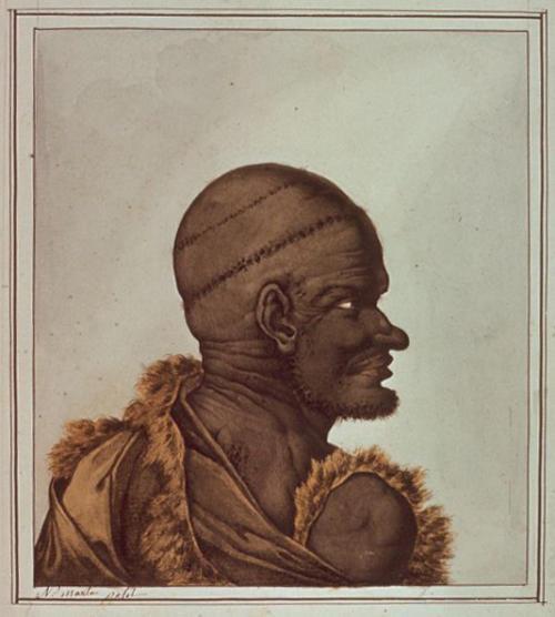N.-M. Petit, Aboriginal man, Van Diemen's Land.